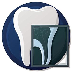 Teeth having x-ray
